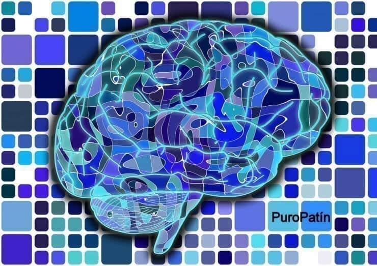 cerebro colores azul