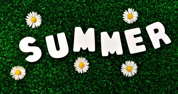 cesped verde verano ingles