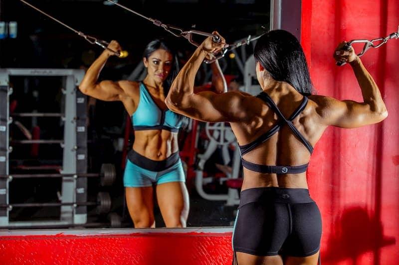 somatotipo mesomorfo fitness